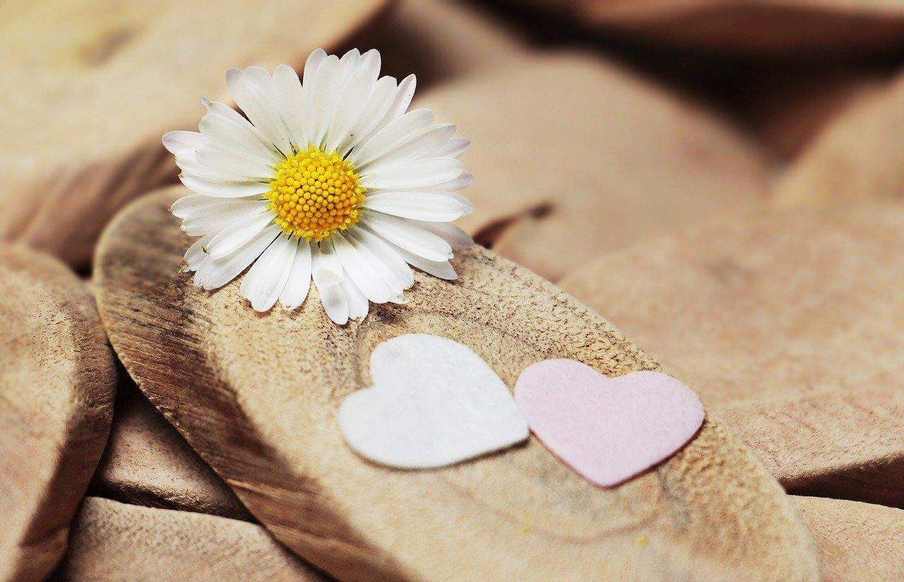 hartjes bloem